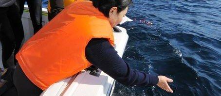 sea scattering japan