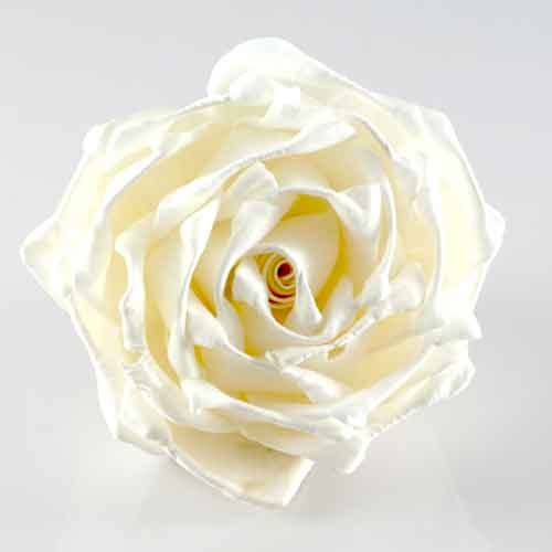 Rose Floating Paper Flower